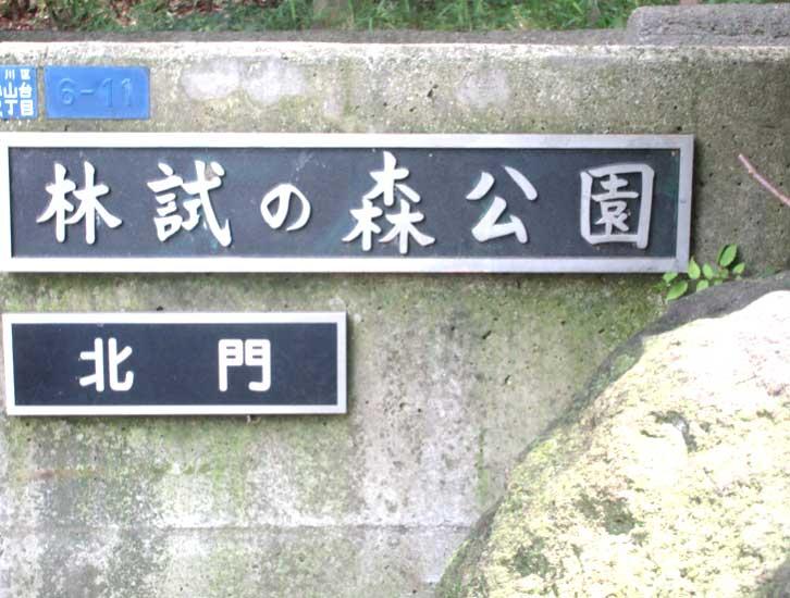 公園入り口画像
